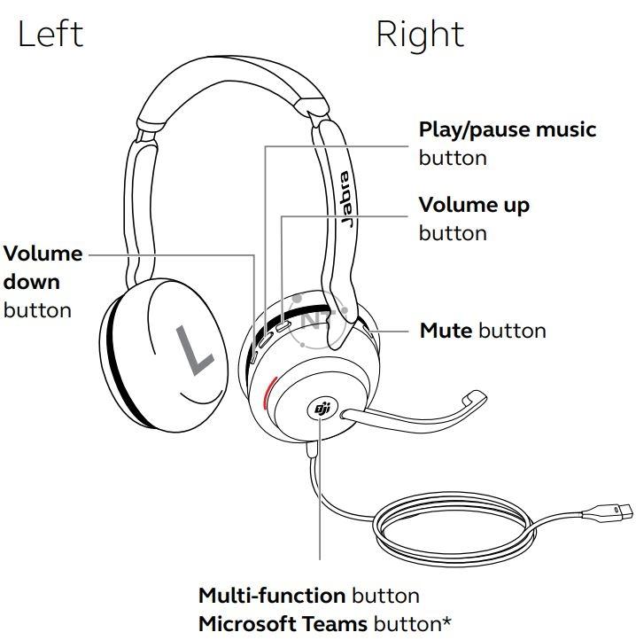 Cách sử dụng tai nghe Jabra Evolve2 30