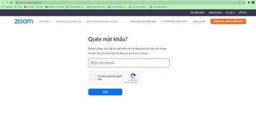 Nhập địa chỉ Email của bạn và click vào tôi không phải người máy. Sau đó bấm Gửi