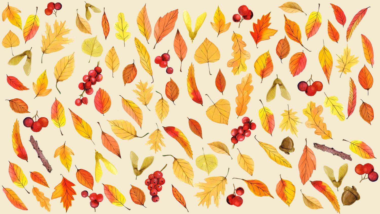 Hình nền mùa thu