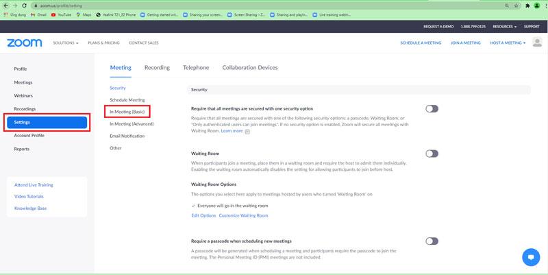 Bạn chọn Seetings trong mục Personal > Chọn In Meeting (Basic).