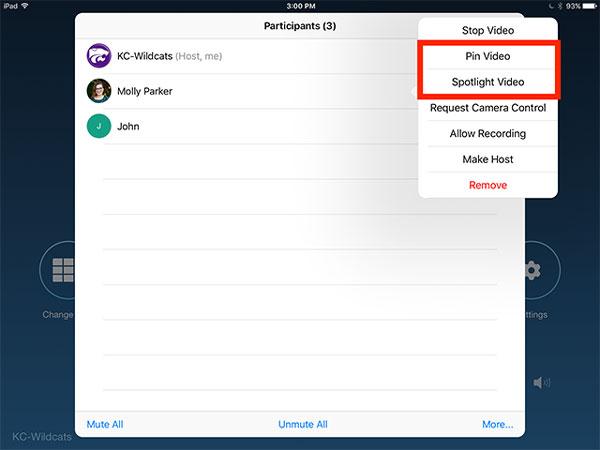 Nhấn vào Tên máy chủ hoặc Người tham gia> nhấn vào Pin hoặcSpotlight Video