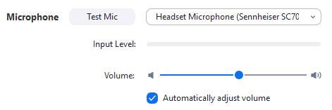 Hướng dẫn cách test mic trong Zoom